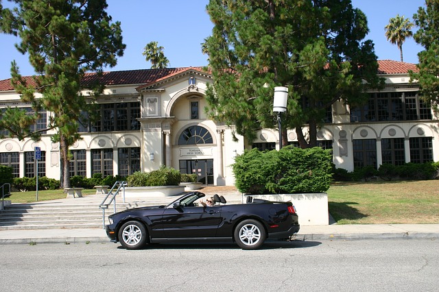 LVN PROGRAMS LOS ANGELES